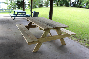 New picnic
