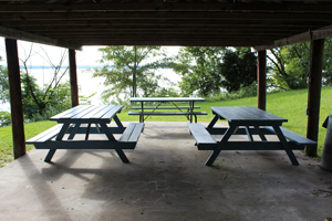 Existing picnic